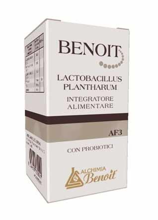 BENOIT LACTOBACILLUS PLANTHARUM INTEGRATORE ALIMENTARE A BASE DI PROBIOTICI - 30 CAPSULE