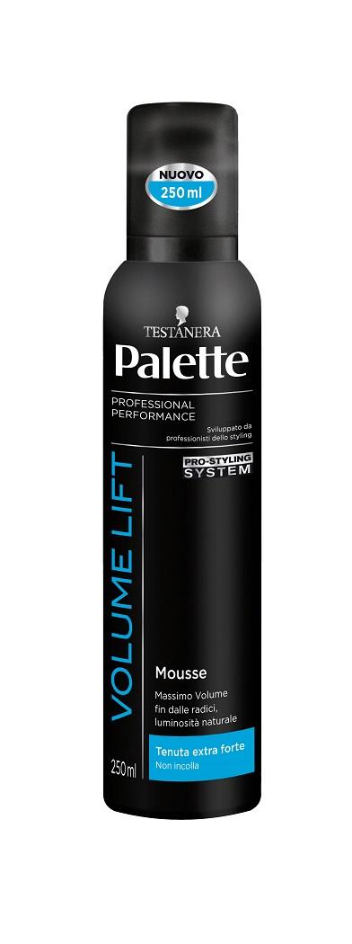 TESTANERA PALETTE MOUSSE VOLUMIZZANTE TENUTA EXTRA FORTE - 250 ML