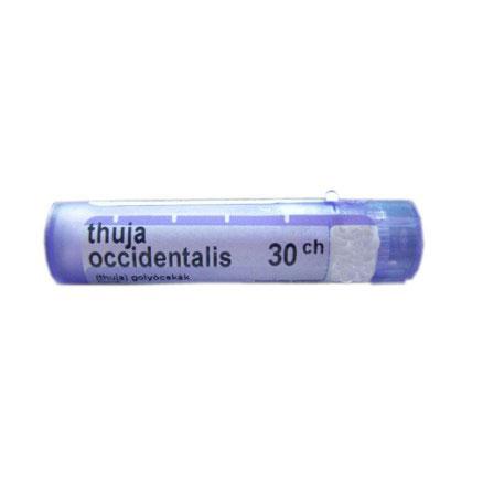 THUYA OCCIDENTALIS 30 CH 80 GRANULI