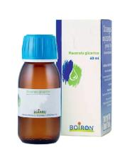 BOIRON ABIES PECTINATA MACERATO GLICERICO - 60 ML