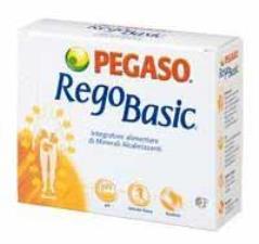 REGOBASIC 12 BUSTINE