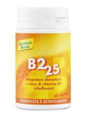 B2 25 60 CAPSULE
